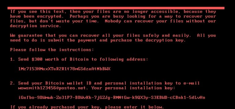 Fig 9. Petya ransom screen