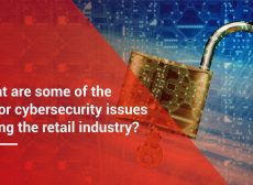 What are some of the major cybersecurity vulnerability points facing the retail industry
