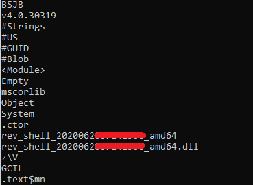 Image: Strings from CVE-2019-18935 DLLs